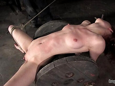 Calico bondage hogtied