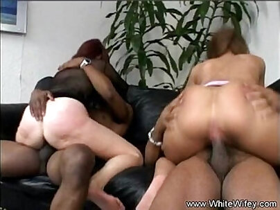 Black cocks fuck a white housewife